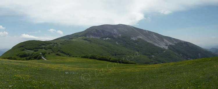 Escursioni nei sentieri del monte Catria.
