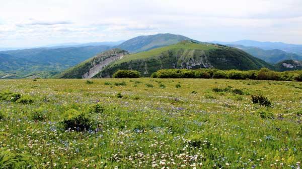 Monte Petrano e monte Nerone visti dai prati di monte Tenetra